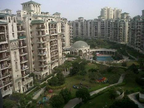 3 BHK Apartment for Rent in Sector-93 A, Noida