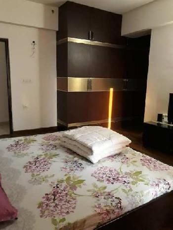 Residential Flat for Rent in Grand Omaxe, Sector-93 B Noida, Noida, U P