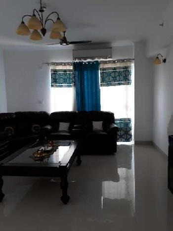 Residential Flat for Rent in Sector-93 A Noida, Noida, U P
