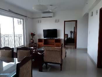 3 BHk Apartment for Sale in Sector 104 Noida