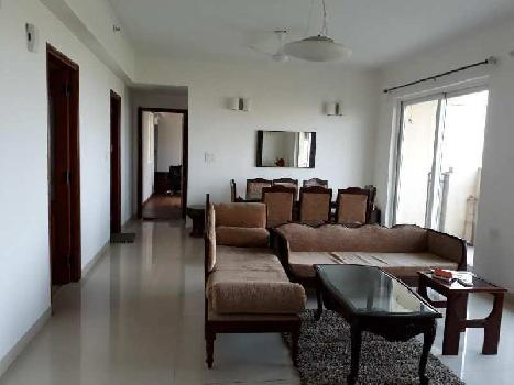 3 BHk Apartment for Rent in Sector 104 Noida