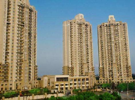 3 BHK Flat For Rent in Noida