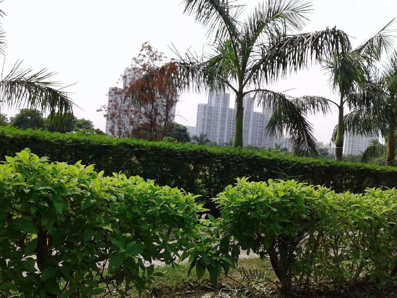 2 BHK House For Sale In Sector-37 Greater Noida