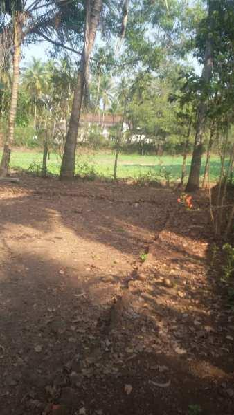 Land with Portughuese House for Sale - Parra