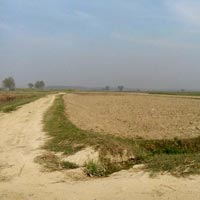 500 Bigha Land for Solar Power Plant near Laksar-Purkaji highway, Haridwar