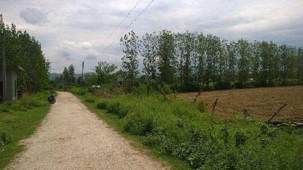 Farm Land for Sale in Shyampur, Haridwar
