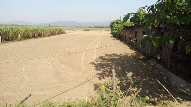 Agricultural Land near Ganga ji