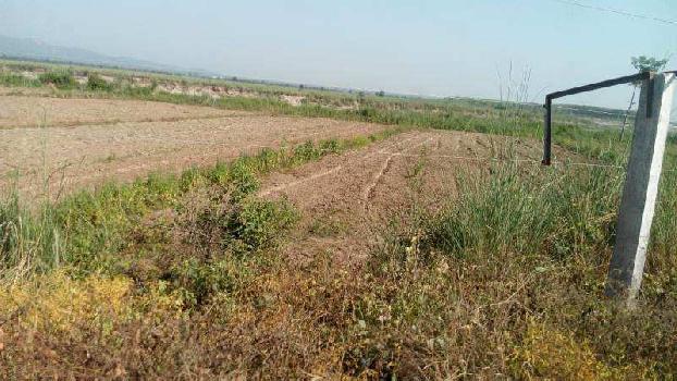 Agricultural Land near Ganga ji for Ashram , Farm house