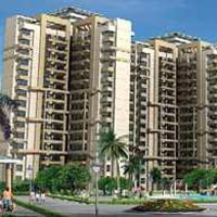 Sidhartha NCR one sector-95 gurgaon