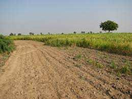 Industrial Land / Plot for Sale in Bharuch