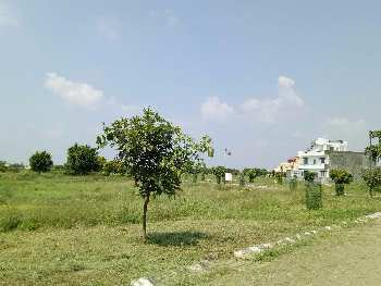 Residential Plot For Sale in Ganaur, Sonepa