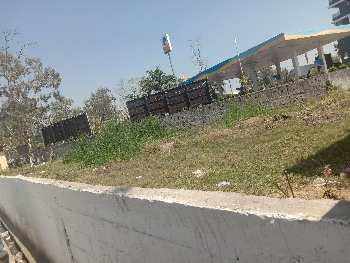 Residential Plot For Sale in Assandh, Karnal