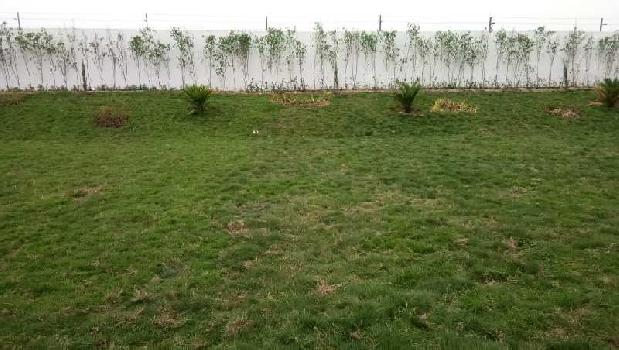Farm House For Sale In Ganaur , Sonipat
