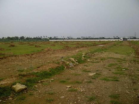 Farm Land for Sale in NH-1 MAIN GT ROAD MURTHAL SONEPAT
