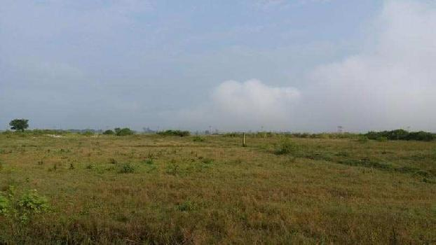 Farm Land for Sale in Kami free zone Sonipat