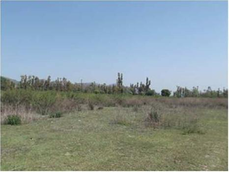 Residential Plot For Sale in Kanpur Lucknow Road, Lucknow