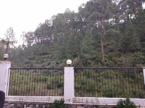 2 BHK Flats & Apartments for Sale in Bhowali, Nainital