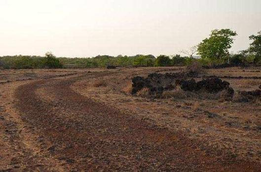 Residential Plot for Sale in Pinjore, Panchkula