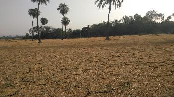 Commercial Lands /Inst. Land for Sale in Dera Bassi