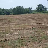 Commercial Plot for Sale in Chandigarh