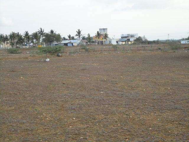 Main Road Plot  for sale shalimar village
