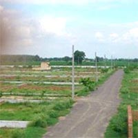 Plot for Sale in Chappurala At Very Low Price