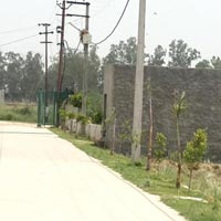 Free Hold Plot for Sale Near Dadri By Pass
