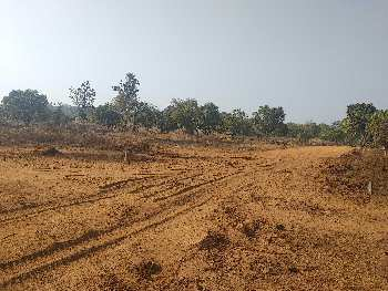Residential Plot for sale in Perto De Goa, Niravade, Sawantwadi