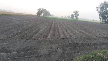 Land for sale in ferozpur ind. cum commercial