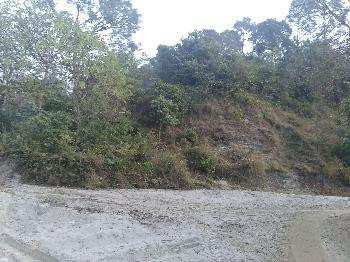 Cheap and hilly agricultural land for sale in Punjab