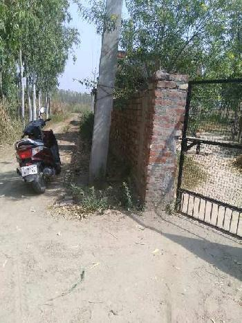 Farmhouse with land for sale near city hoshiarpur