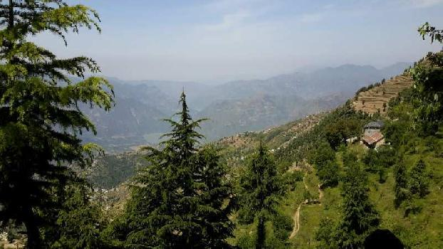 Farm land with apple Orchard in Himachal chamba