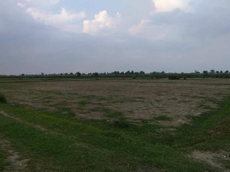 2 BHK Farm House for Sale in Atrauli, Aligarh
