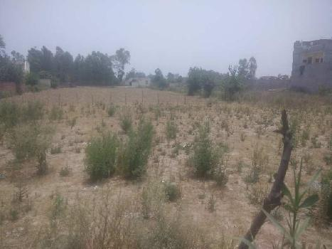 Agricultural/Farm Land for Sale in Bassi Gulam Hussain, Hoshiarpur