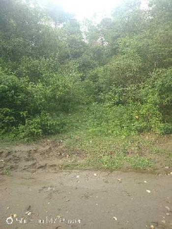 Agricultural/Farm Land for Sale in Bhunga, Hoshiarpur