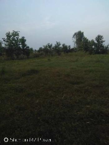 Agriculture land for sale in hoshiarpur kandi