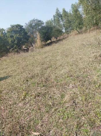 56 acre