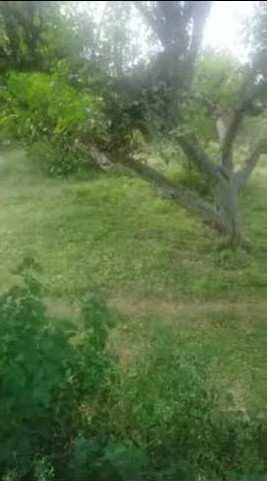 Hilly cum plain land for sale in Hoshiarpur