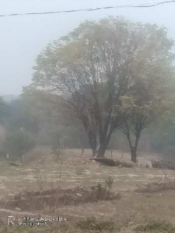 Land for sale in Punjab Ropar