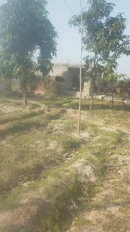 Agriculture land for sale in Hoshiarpur near haryana