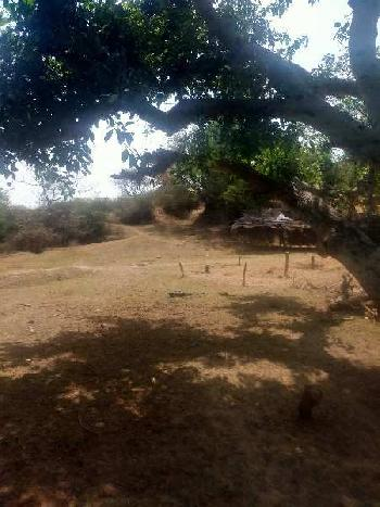 Hilly with plain land for sale in Punjab Hoshiarpur
