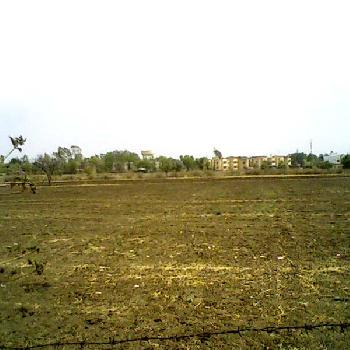 3200 Sq. Feet Residential Land / Plot for Sale At Gomti Nagar, Lucknow