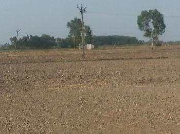 Commercial Lands /Inst. Land for Sale in Gomti Nagar, Lucknow