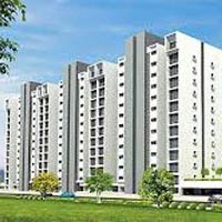 735 Sq. Feet Flats for Sale in Kopar Khairane
