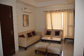 House for sale in sector 17 panchkula Haryana