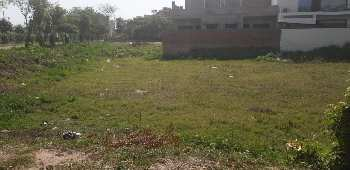 147 Sq. Meter Residential Plot for Sale in Sector 12A, Panchkula