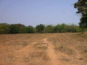 Plot for sale in sector 6 Panchkula Haryana