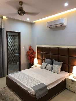 House for rent  in sector 8 panchkula Haryana