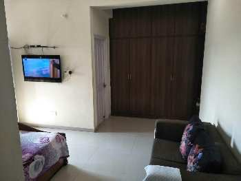 House for rent in sector 21 panchkula Haryana