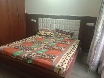 House for sale in sector 19 panchkula Haryana